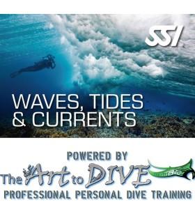 SSI Waves, Tides & Currents