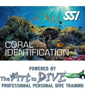SSI Coral Identification